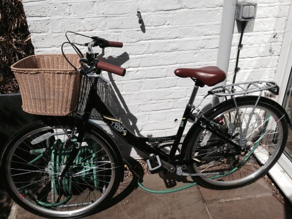 Gab's Bike